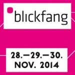 WebBlickfangKlein